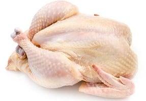 Kip heel polderhoen