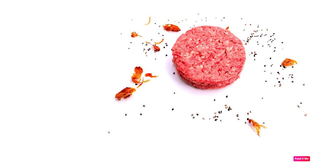 De lekkerste hamburger